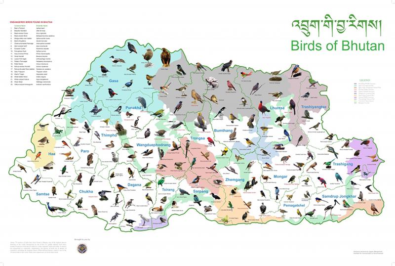 birds-of-bhutan1-1024x688